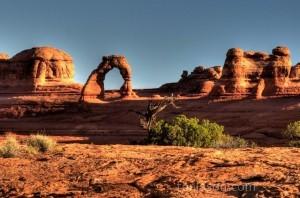"""""""Delicate Arches"""""""