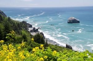Pacific Ocean - Klamath CA