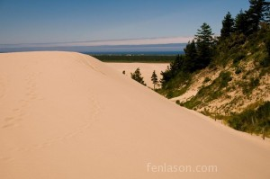Oregon Sand Dunes with Tree Island on the right and the Pacific Ocean in the background
