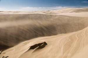 Oregon Sand Dunes National Recreation