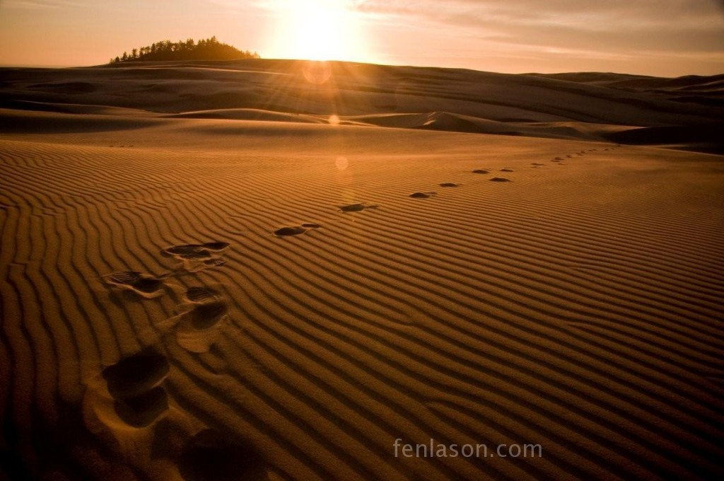 Sunset on the Oregon Sand Dunes