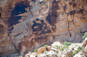 Lizard petroglyphs in Dinosaur National Monument