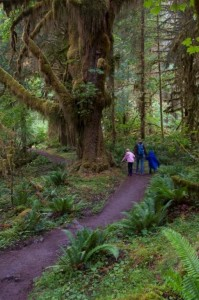 Rochelle, Carlye, & Alyssa on the Hoh River Trail