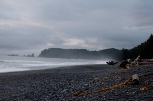Rialto Beach - Forks Washington