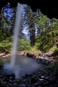 Ponytail Falls from underneath