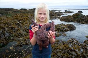 Carlye holding a large starfish