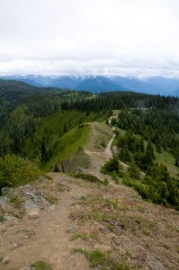 Hiking Hurricane Ridge Trail